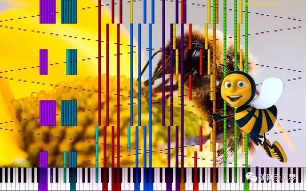 王迟改编、手风琴演奏《野蜂飞舞》视频欣赏