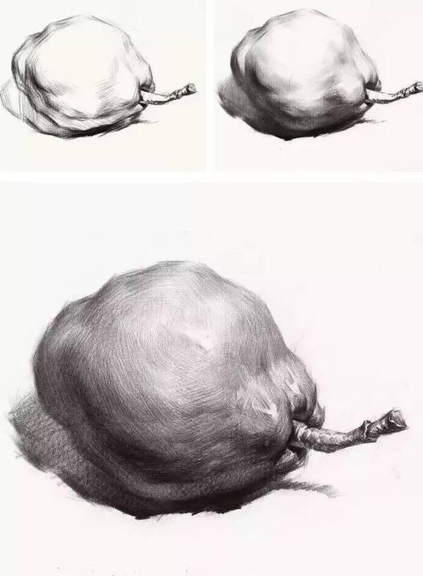 素描静物单体绘画,单个物体绘画步骤分析,调子与结构