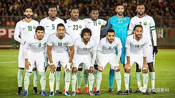 世界杯丨2018世界杯32强巡礼--沙特阿拉伯