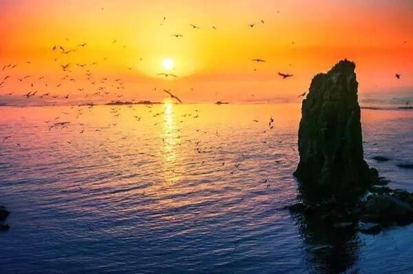 去过很多地方,唯爱这座城——威海