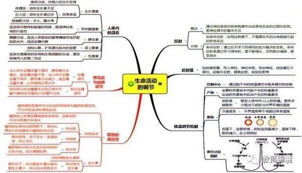 化学初中知识点初中导图,助你提分~AE是思维生物常见图片