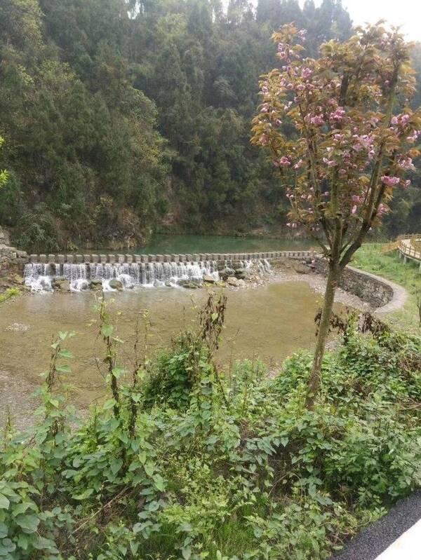 江門桃花塢旅游度假區項目位于江門鎮大元村,據說是瀘州市重點