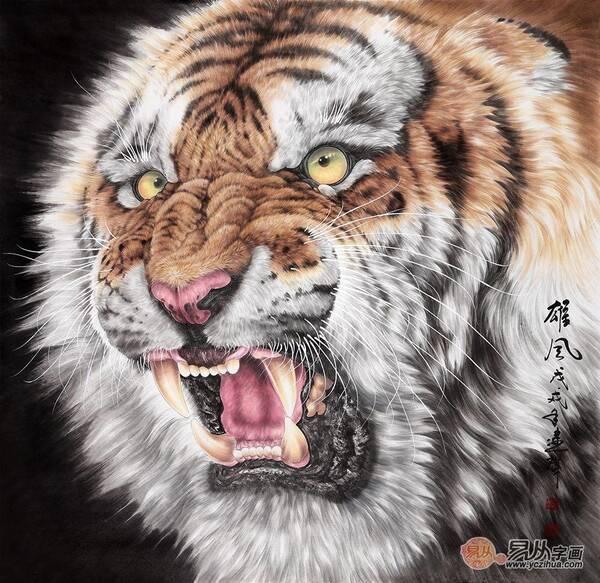 """""""中国虎王新秀""""王建辉斗方工笔动物画 老虎图《雄风》"""