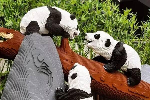 """100万乐高集结ifs,""""方块动物世界""""带你过一个缤纷趣味"""