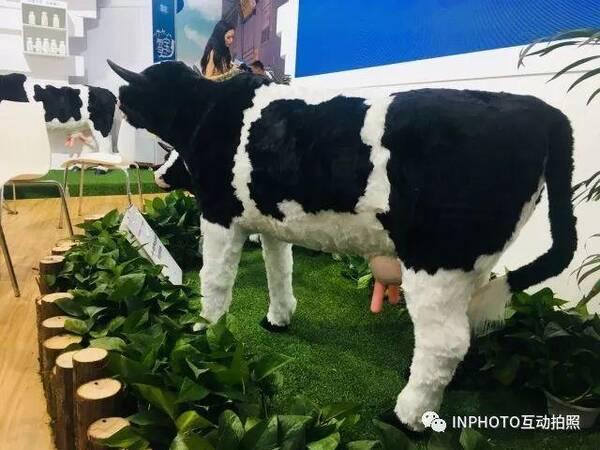 IN Show作为蒙牛展会特邀的互动环节提供方,也将#INPHOTO#放置在蒙牛的小草原上,正值世界杯大战期间,绿荫赛场也和蒙牛的互动现场布置不谋而合。#INPHOTO#特别设计了奶牛和国旗两种拍照滤镜,为到场参观的用户们提供有趣的互动拍照体验,见证蒙牛的自然力量。