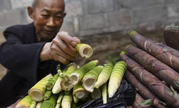 餐饮行业一般纳税人购进农业生产者自产农产品