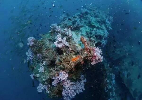 普吉岛位于泰国西南部,印度洋安达曼海东南部。 它是一个狭长的岛屿,南北长,东西窄。 它是泰国最大、最早开发的岛屿。 因为它有许多天然美丽的海滩和椰林,所以也被称为安达曼群岛之珠。普吉岛静与动在一定程度上实现了完美结合。 宁静优雅的海滩和丰富多彩的夜生活都是普吉岛生活的一部分。参与其中,忘记你的身份,享受海岛风情的自由和舒适。无论你是单身还是一起旅行,你都可以在普吉岛尽情享受,感受岛上的宁静或热情。泰铢在普吉岛被广泛使用。汇率稳定在1 : 5左右( 1元5铢)。丰富的东南亚美食、纯净优美的自然环境
