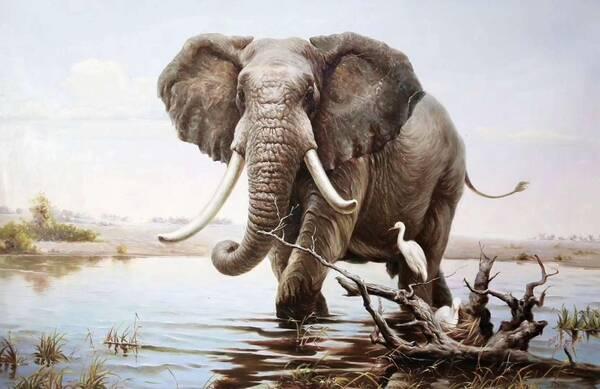 薛海涛-超写实动物油画作品