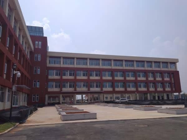 武汉市蔡甸区将有两所使用品德v品德新建小学思想的小学重要性图片