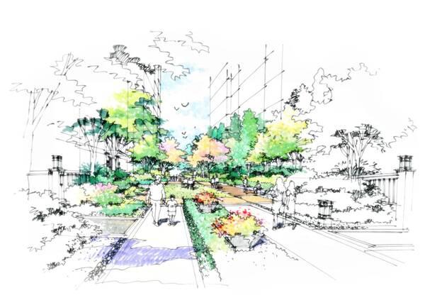 景观设计手绘