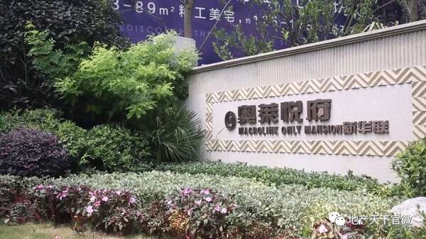 奥莱悦府二期a总监认筹中,上海新华联v总监总监社艾丽风别墅图片