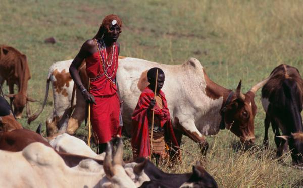 世界上压力最小的国家,风景迷人,10头牛就能娶