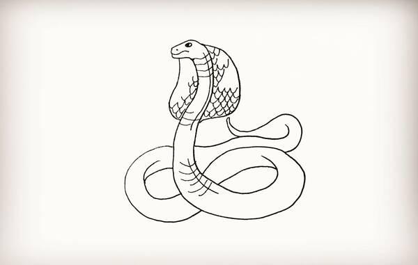 第七步 最后我们把眼镜蛇涂上自己喜欢的颜色把。 播放/span> 眼镜蛇(英文:Cobra)为眼镜蛇属动物的通称,是眼镜蛇科的一属,其成员大多被统称为眼镜蛇。虽然世上也有不少其他蛇类的名字包含眼镜蛇(Cobra)一称(如眼镜王蛇、水眼镜蛇、唾蛇),但它们因演化亲缘性不足而并不归为此属。