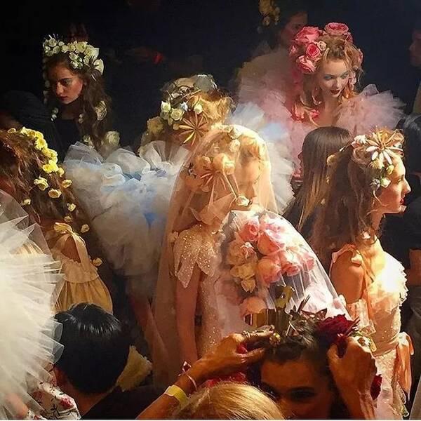 一周花讯:Hanneke喜提冠军;纽约时装周的花艺元素