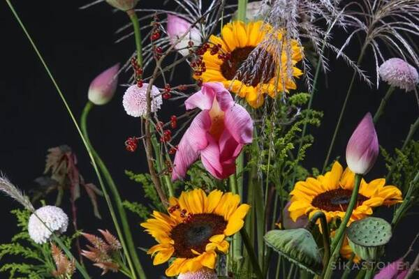 现代与古典,波西米亚与城市花园风:每一个,我都爱得深沉!