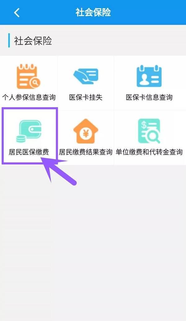 个人怎么在网上交纳保险 (findlaw.cn)
