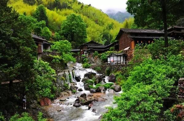 """这些""""网红村""""比旅游景点还火爆!它们的优势你们村可能"""