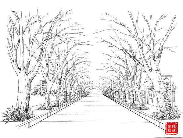 好美!江西大学生历时5个月手绘校园风景