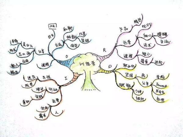 小学思维导图可以帮助小孩子理清思路,锻炼他们的逻辑思维,写作,记忆