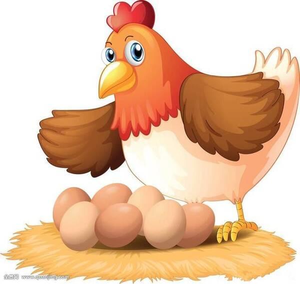 我说不用,它自己就会生,只是孵不出小鸡而已,我说母鸡生蛋说通俗点就