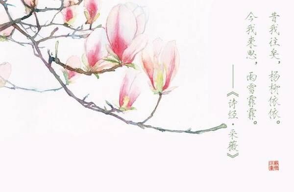 ——《诗经国风周南桃夭》 译:桃树繁茂,桃花灿烂.