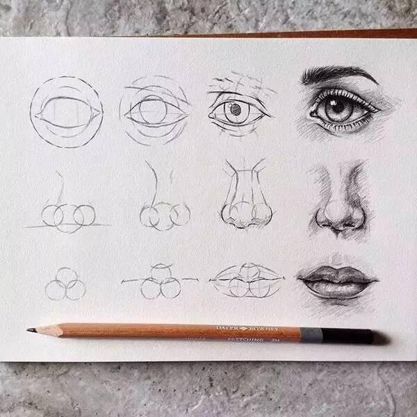 眼睛,鼻子,耳朵 ▲ 嘴唇的结构分析和黑白灰的解剖 注意明暗之间的