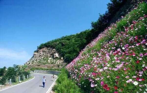 百花山风景区位于北京市房山区史家营乡莲花庵,距市区89公里,乘车走1