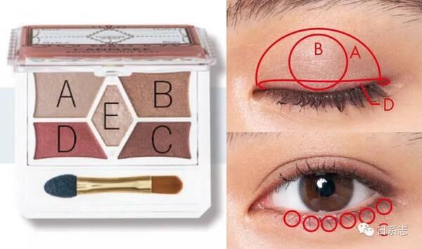 ▼ 步骤: 用眼影刷把c涂抹于整个眼窝,然后用手指晕染开;再用手指把a