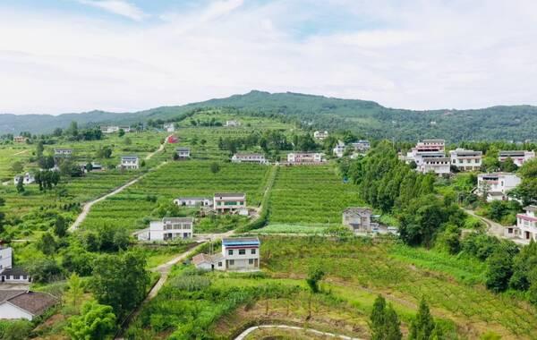 四川盆地北缘、米仓山南麓,坐落着一个清秀美丽的县城——旺苍县,这里既是川陕革命老区,同时也是国家重点生态功能区。