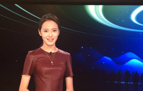 艾楚怡  2011年中华小姐环球大赛冠军,2012年从中国传媒大学播音系毕业后签约凤凰卫视。在北京记者站磨练三年,曾是冲锋陷阵在一线的记者。如今主持《公益中国》、《与梦想同行》、《新闻今日谈》。