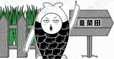 大鱼漫画:拥有致富经一般的人生是什么感受?