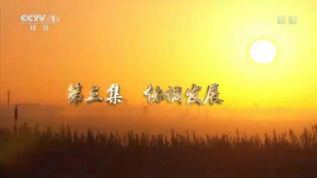辉煌中国第三集:协调发展|全集