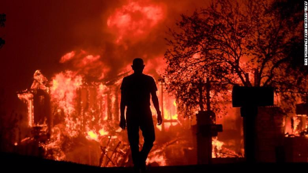 美国加州森林大火过火面积超11万亩