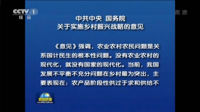 中共中央国务院印发关于实施乡村振兴战略的意见