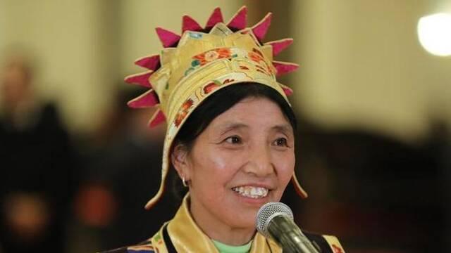不懂汉语的藏族代表如何履职尽责?卓嘎回应