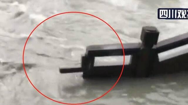 成都府河暴涨 九眼桥沿河护栏部分冲毁