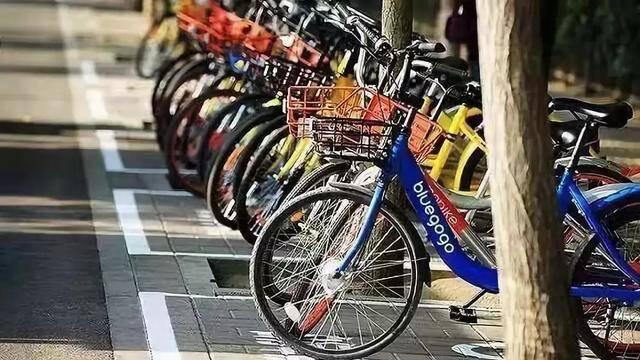 共享单车新战事:哈啰青桔进军一线,摩拜变身美团黄,ofo落寞