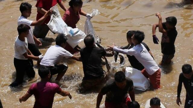 广西:近万村民参加抢鱼