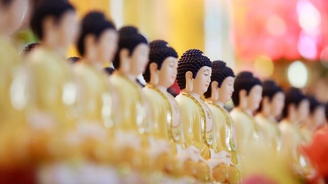 瞻礼全球释迦牟尼佛圣像,见者增福