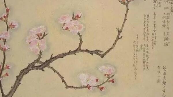 那些藏在唐诗宋词里的春色有哪些?
