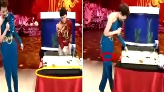 视频:傅琰东春晚魔术表演失败 董卿巧妙救场
