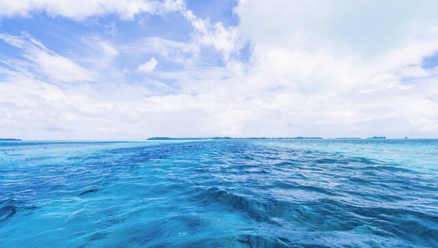 省人大代表来济报到 聚焦经略海洋等热门话题