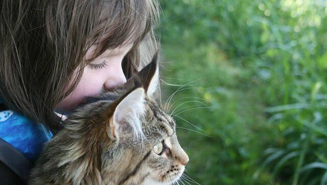这个6岁的女孩有自闭症 但猫咪是她最好的朋友