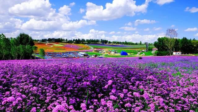 黑龙江省首届旅游产业发展大会今日启幕