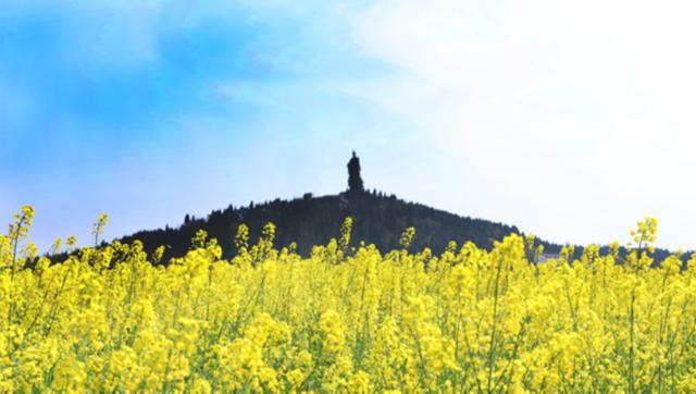 正是春来好风光:重庆各大景区逐步恢复运营
