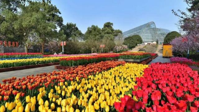 重庆市1230个城市公园对外开放