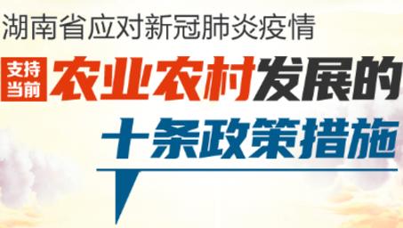 湖南出台支持农业农村发展十条政策