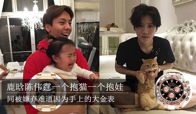 鹿晗陈伟霆一个抱猫一个抱娃 同被嫌弃难道因为手上的大金表