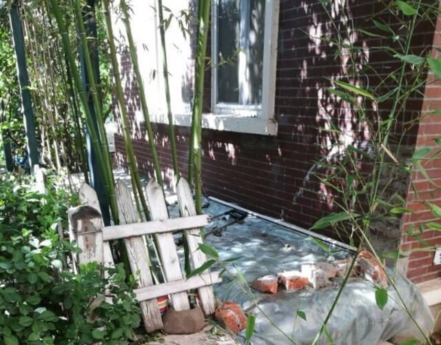 杨童舒花园凌乱。