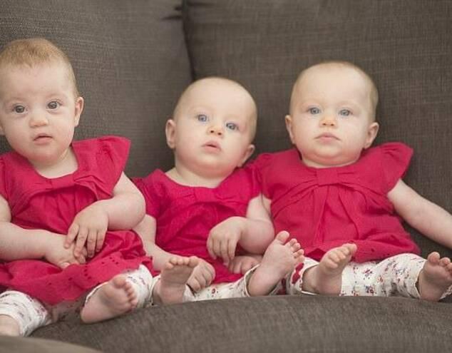 这三个可爱的宝宝是三胞胎